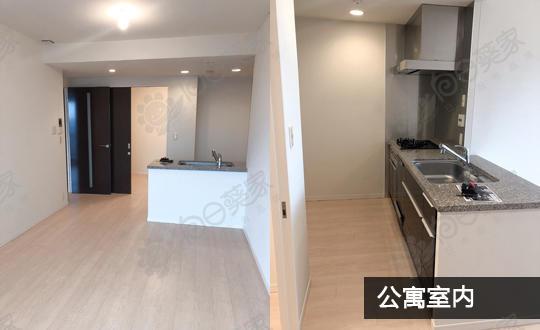 首付121万人民币贷款购买310万东京都江东区公寓
