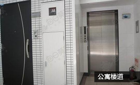 东京都目黑区大桥公寓123万人民币