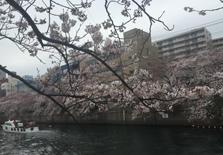 投资日本房产并不是只有单间公寓