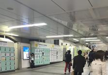 年轻人的天堂,越来越繁荣的东京都涩谷区惠比寿