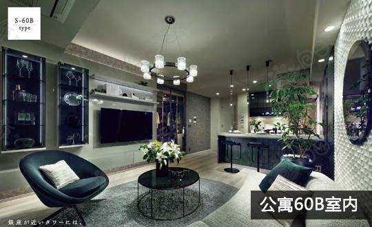 日本东京都江东区丰洲东京湾海景公寓