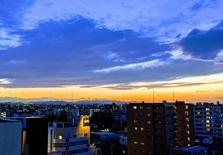 多少人选择移民日本?看日本移民的政策分析