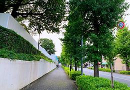 日本郊外房子有投资价值吗?