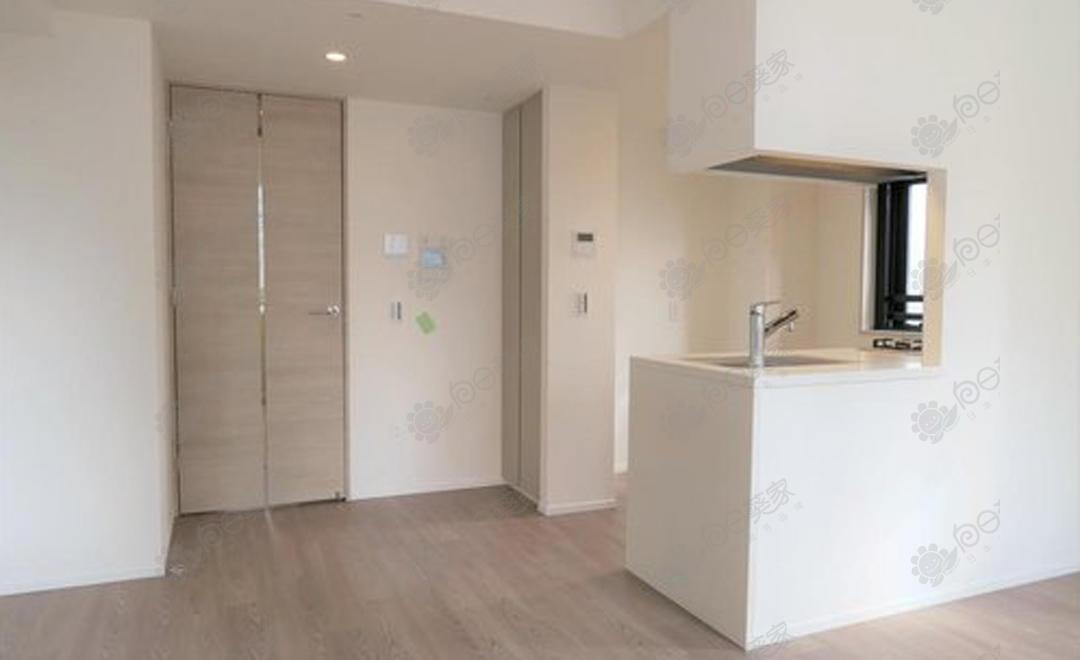 日本东京都中央区银座1居室公寓