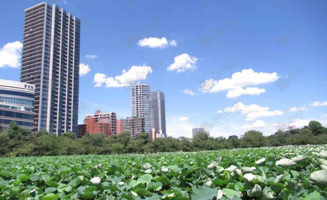 日本东京都台东区上野2居室公寓