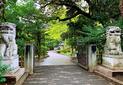 日本关东、关西、东海地区最受欢迎的大学排行