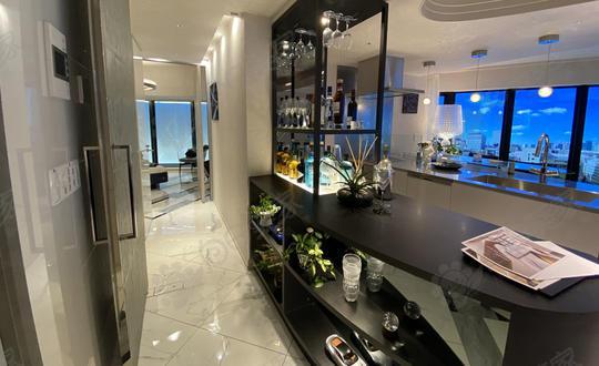 日本东京都中央区东银座筑地自住2-3居室公寓