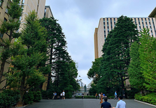 2021世界大学排行榜,日本有116所学校上榜