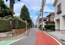 在世界上的国家中日本适合居住吗?