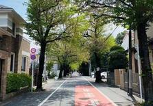 人气稳定,日本东京都居住地排行榜公布
