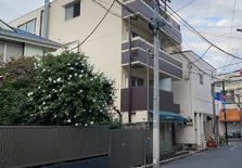 日本东京买房哪里好?举几个东京人气区域例子